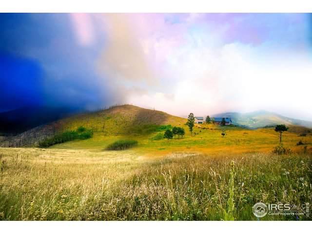 777 County Road 87J, Jamestown, CO 80455 (MLS #902163) :: Kittle Real Estate