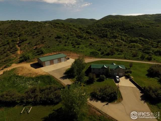 26650 Wheeler Creek Ln, Steamboat Springs, CO 80487 (MLS #902205) :: Windermere Real Estate