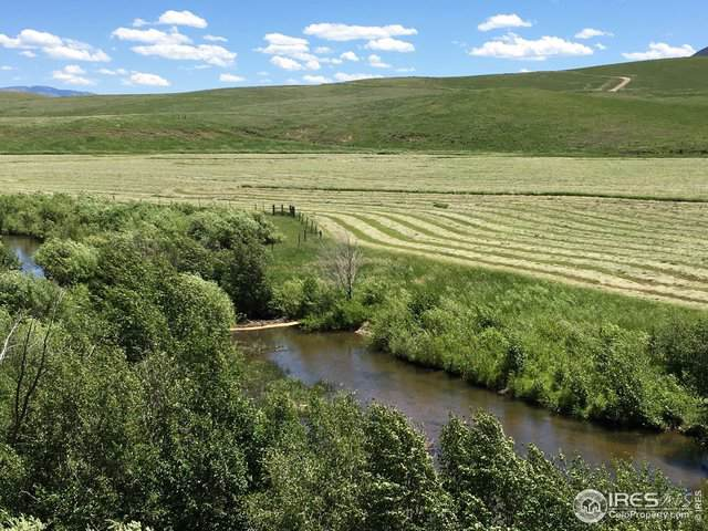 22982 County Road 54, Steamboat Springs, CO 80487 (MLS #902206) :: 8z Real Estate