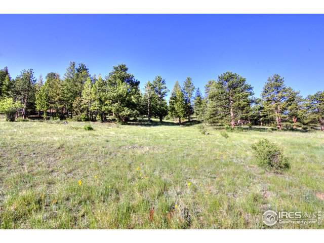 0 Cherokee Ct, Estes Park, CO 80517 (MLS #902228) :: 8z Real Estate