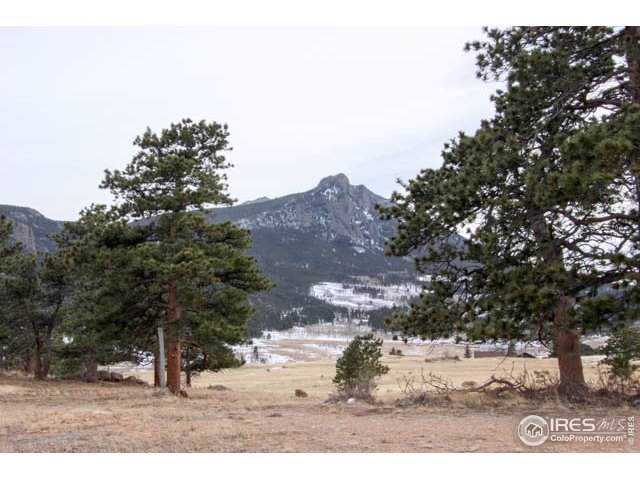 3000 Grey Fox Dr, Estes Park, CO 80517 (MLS #902273) :: 8z Real Estate