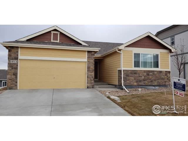 1013 Mt Oxford Ave, Severance, CO 80550 (MLS #902546) :: Downtown Real Estate Partners