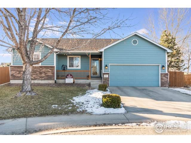 870 Amber Ct, Windsor, CO 80550 (#902770) :: The Griffith Home Team
