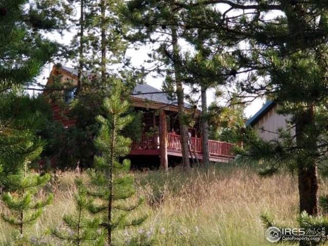 26 Wilderness Road, Walden, CO 80480 (MLS #902881) :: J2 Real Estate Group at Remax Alliance
