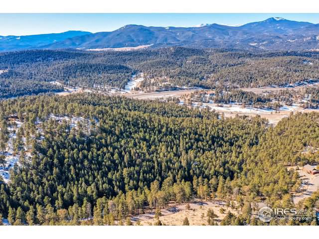 29472 Rainbow Hill Rd, Evergreen, CO 80439 (MLS #903130) :: Colorado Home Finder Realty