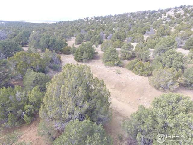 111 River Ridge Trl, Walsenburg, CO 81089 (#903757) :: West + Main Homes