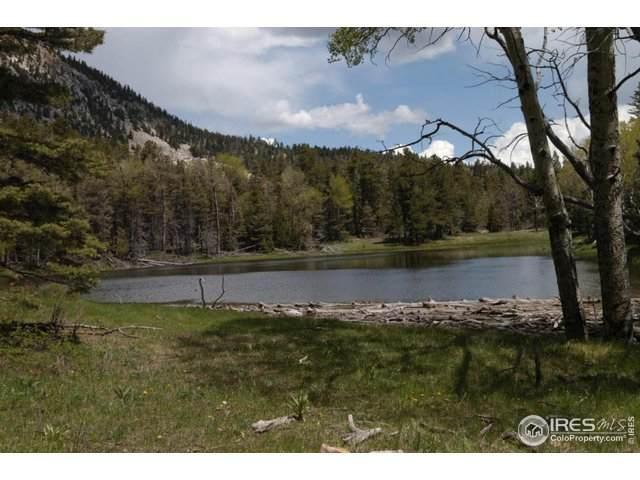 29 Tres Valles West Lot 29, La Veta, CO 81055 (MLS #903771) :: 8z Real Estate