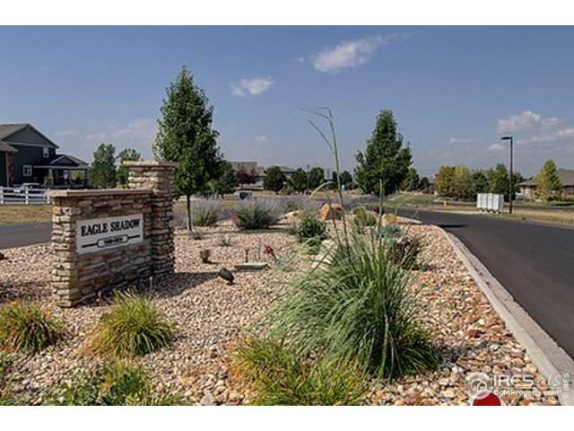7015 E 162nd Ave, Brighton, CO 80602 (#903824) :: HergGroup Denver