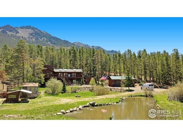 6128 Highway 7, Estes Park, CO 80517 (MLS #903985) :: Hub Real Estate