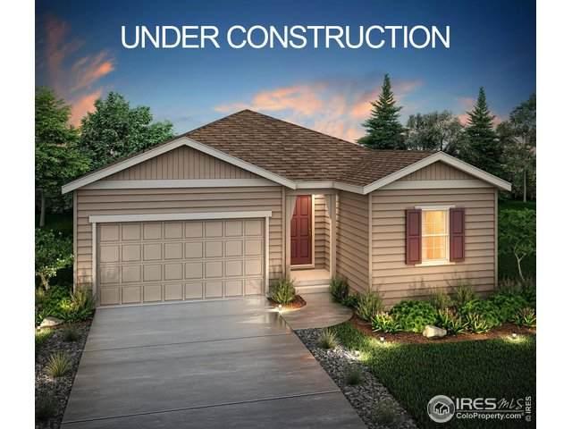 6983 E 118th Pl, Thornton, CO 80233 (MLS #904095) :: 8z Real Estate