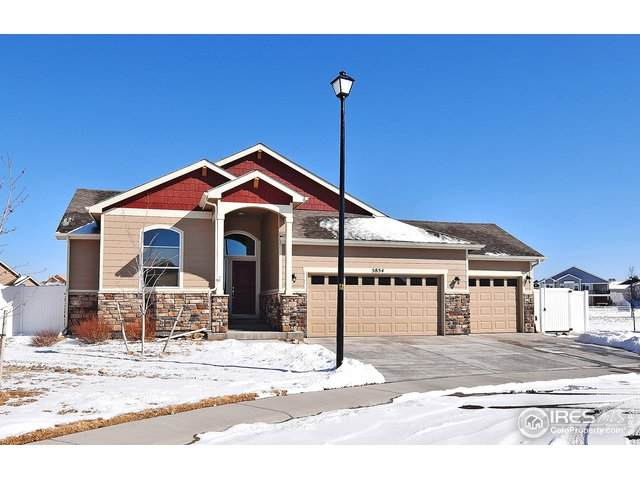 5854 Osbourne Ct, Windsor, CO 80550 (MLS #904200) :: Downtown Real Estate Partners