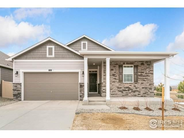 6835 Fraser Cir, Frederick, CO 80530 (MLS #904292) :: 8z Real Estate