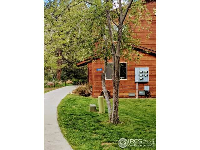 509 Fall River Ln C, Estes Park, CO 80517 (MLS #904404) :: Jenn Porter Group