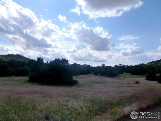 La Veta Pines Ranch, Walsenburg, CO 81089 (MLS #904413) :: 8z Real Estate