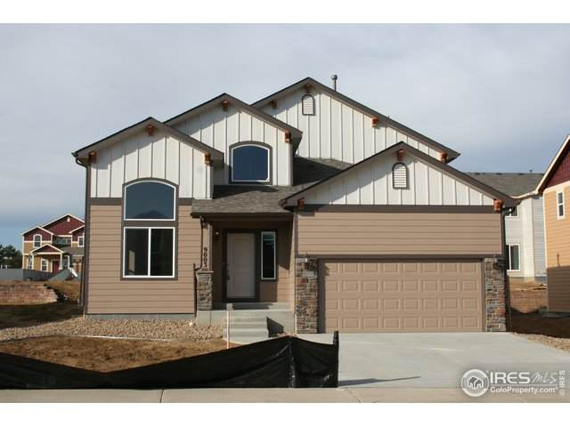 1381 Copeland Falls Rd, Severance, CO 80550 (MLS #904846) :: June's Team