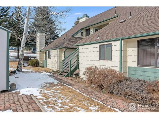 1010 S Saint Vrain Ave #5, Estes Park, CO 80517 (MLS #904900) :: Jenn Porter Group