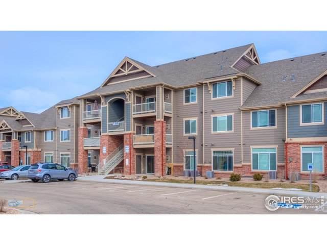 804 Summer Hawk Dr #203, Longmont, CO 80504 (MLS #905129) :: 8z Real Estate