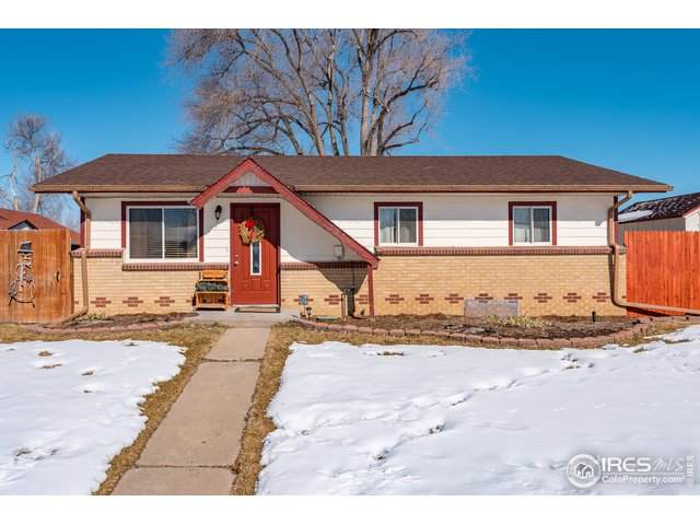 307 Berwick Ave, Firestone, CO 80520 (MLS #905159) :: Downtown Real Estate Partners