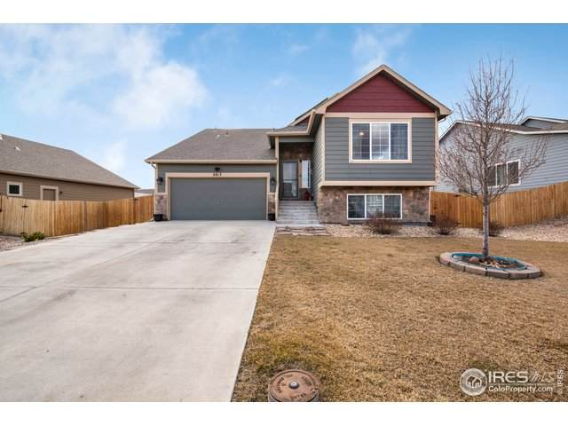 2817 Avocado Ave, Greeley, CO 80631 (#905325) :: The Margolis Team