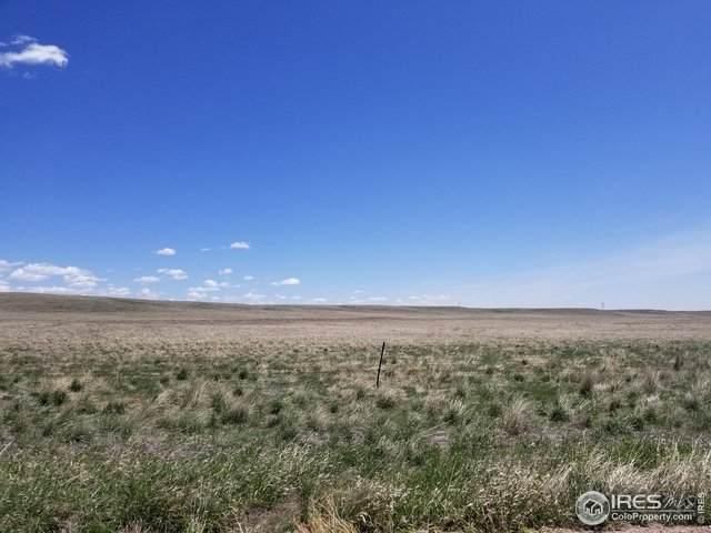 0 County Road 114 - Photo 1