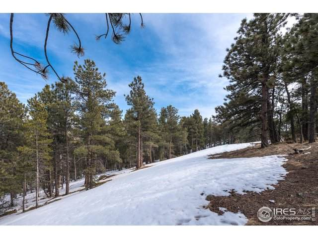 1997 County Road 100J, Ward, CO 80481 (#906993) :: Kimberly Austin Properties