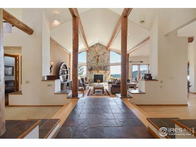 22545 Treetop Ln, Golden, CO 80401 (MLS #907339) :: 8z Real Estate