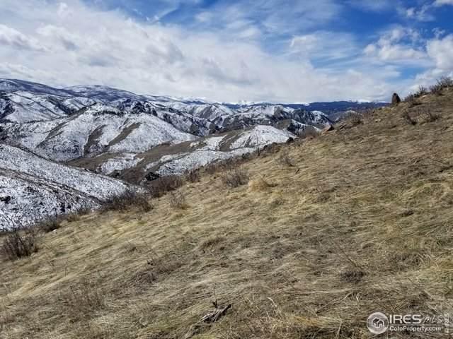 265 Milner Mountain Way, Livermore, CO 80536 (MLS #907596) :: Kittle Real Estate