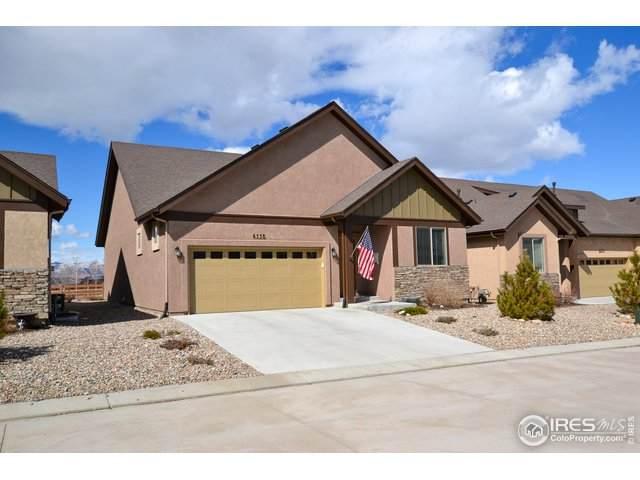 6558 Petaluma Pt, Colorado Springs, CO 80923 (MLS #907673) :: Colorado Home Finder Realty
