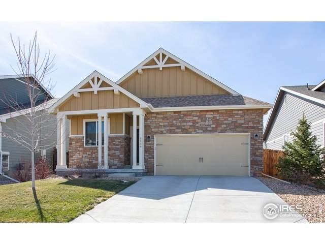 1509 Terra Rosa Ave, Longmont, CO 80501 (MLS #907822) :: Colorado Home Finder Realty