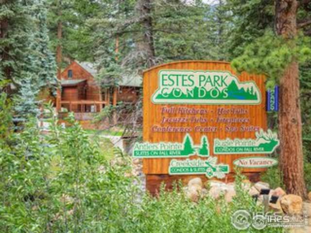 1400 David Dr #17, Estes Park, CO 80517 (MLS #908010) :: Colorado Home Finder Realty