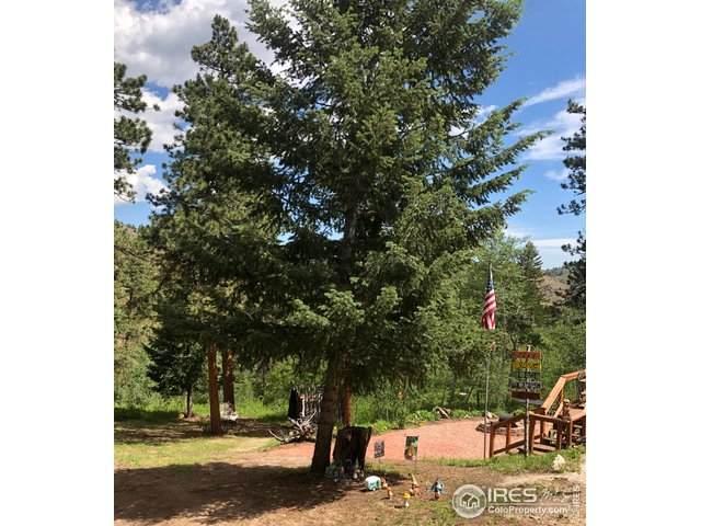 122 Blackburn Mountain Dr, Livermore, CO 80536 (MLS #908729) :: Jenn Porter Group