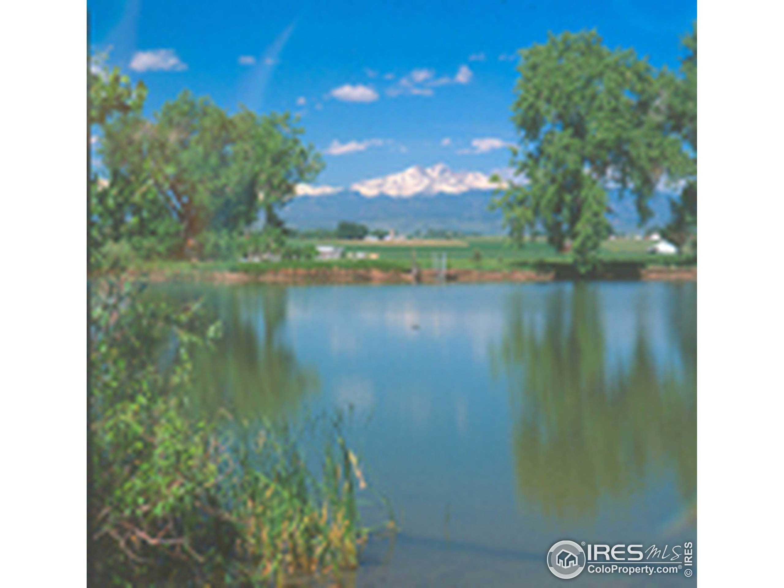 501 Monico Gardens Dr, Evans, CO 80620 (MLS #909007) :: Hub Real Estate