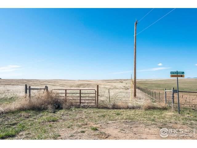 Tbd Buffalo Range Ln, Wellington, CO 80549 (#910123) :: Kimberly Austin Properties