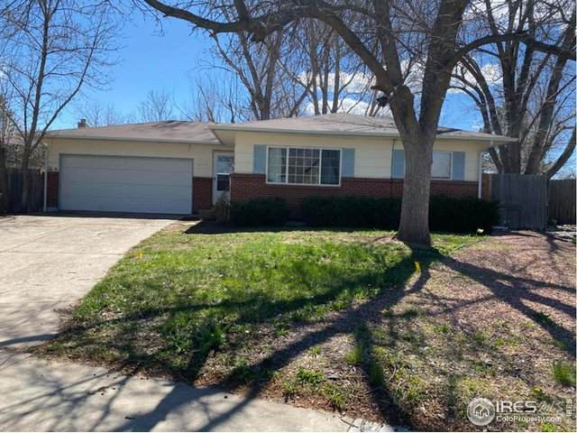 2437 Charolais Dr, Fort Collins, CO 80526 (#910188) :: The Griffith Home Team