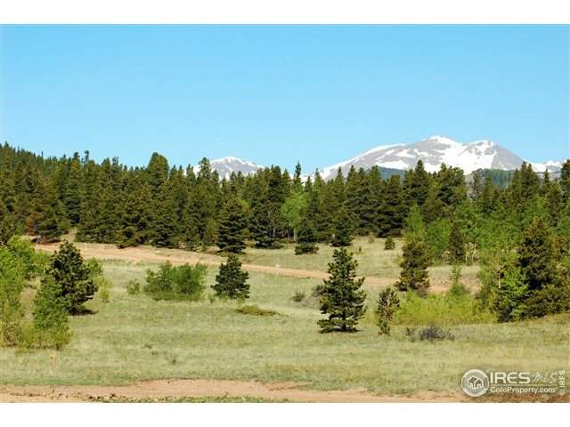 16 Bald Mountain Rds Parcel 16A, Central City, CO 80427 (MLS #910447) :: 8z Real Estate