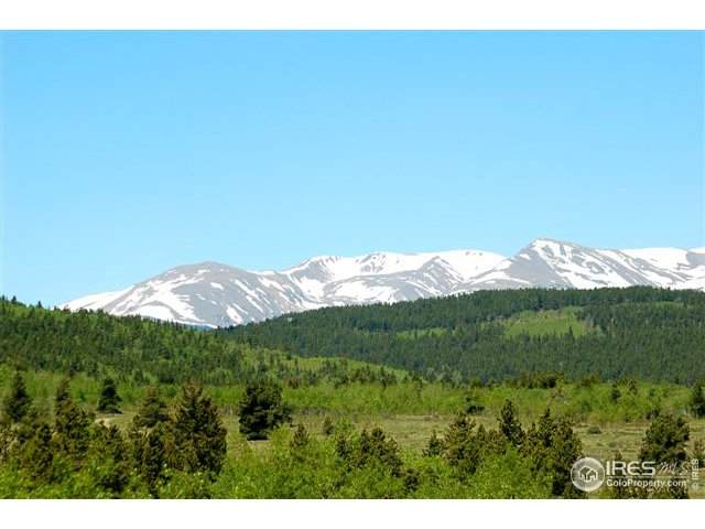21 Bald Mountain Rd - Photo 1