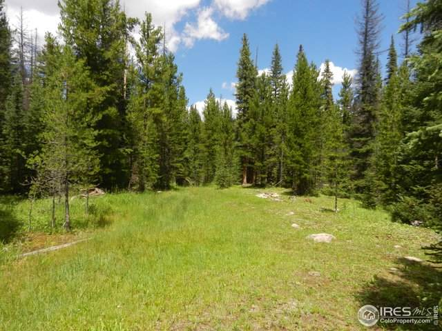 0 Forest Road 169 - Photo 1