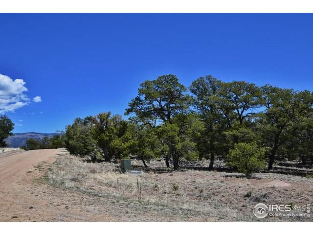 16 Milligan Ranch, Gardner, CO 81040 (MLS #910883) :: Jenn Porter Group