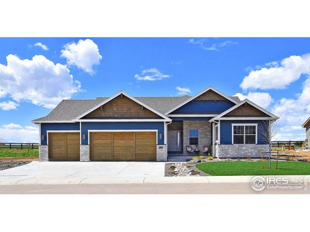 986 Hitch Horse Dr, Windsor, CO 80550 (#910899) :: West + Main Homes