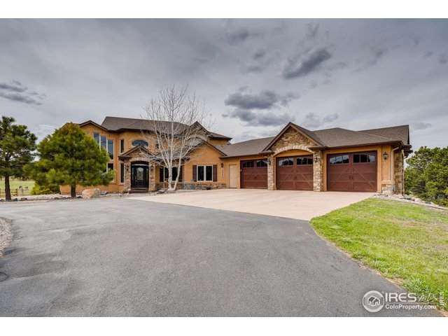 18966 Pagentry Pl, Monument, CO 80132 (MLS #911064) :: 8z Real Estate