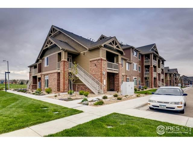 804 Summer Hawk Dr #8101, Longmont, CO 80504 (MLS #911813) :: Downtown Real Estate Partners