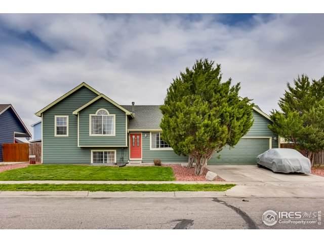 2034 Buckeye Ave, Greeley, CO 80631 (MLS #911816) :: 8z Real Estate