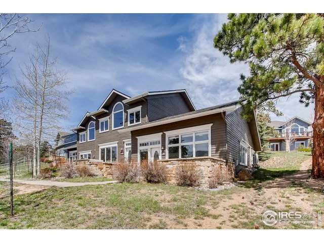 317 Overlook Ln, Estes Park, CO 80517 (MLS #912282) :: J2 Real Estate Group at Remax Alliance