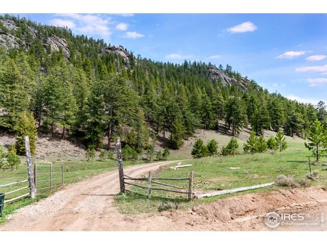 3040 County Road 69, Red Feather Lakes, CO 80545 (MLS #912485) :: 8z Real Estate