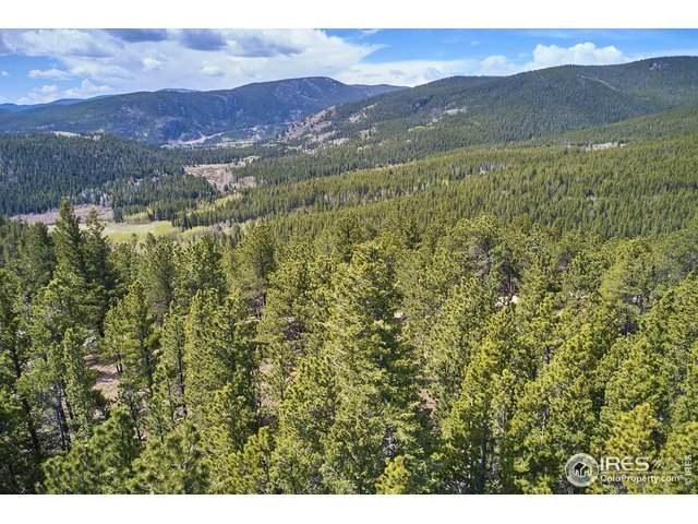 223 County Road 128N, Nederland, CO 80466 (MLS #912620) :: Jenn Porter Group