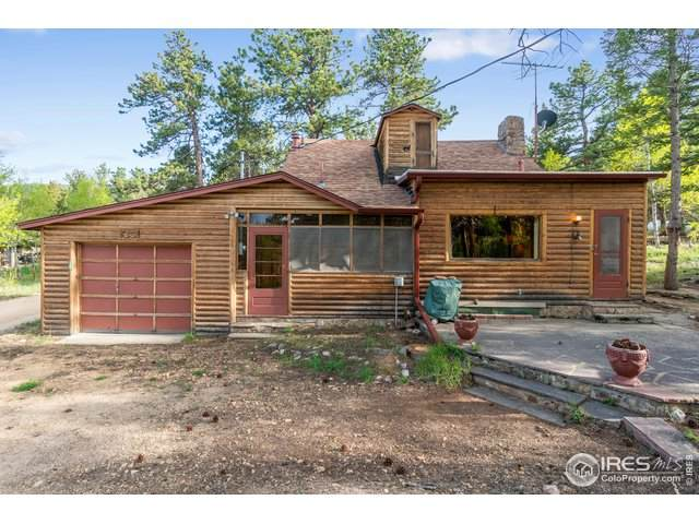 127 County Road 90, Allenspark, CO 80510 (#912898) :: The Peak Properties Group