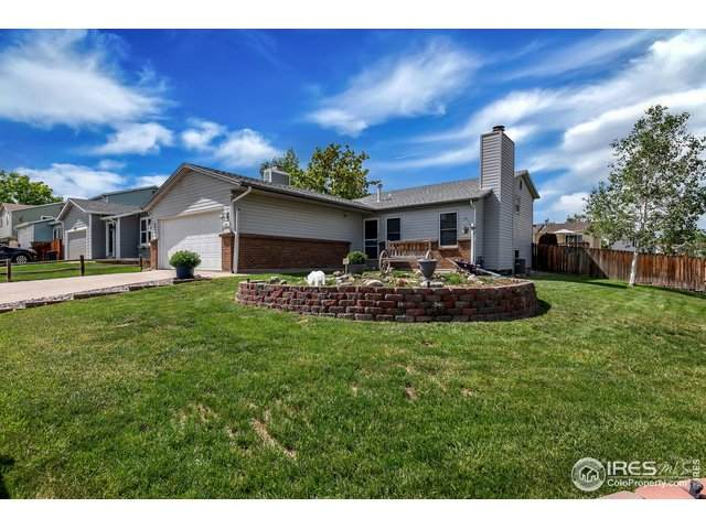 11813 W Marlowe Pl, Morrison, CO 80465 (MLS #913339) :: Colorado Home Finder Realty