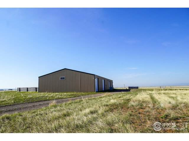 3019 E County Road 82, Wellington, CO 80549 (#913549) :: James Crocker Team