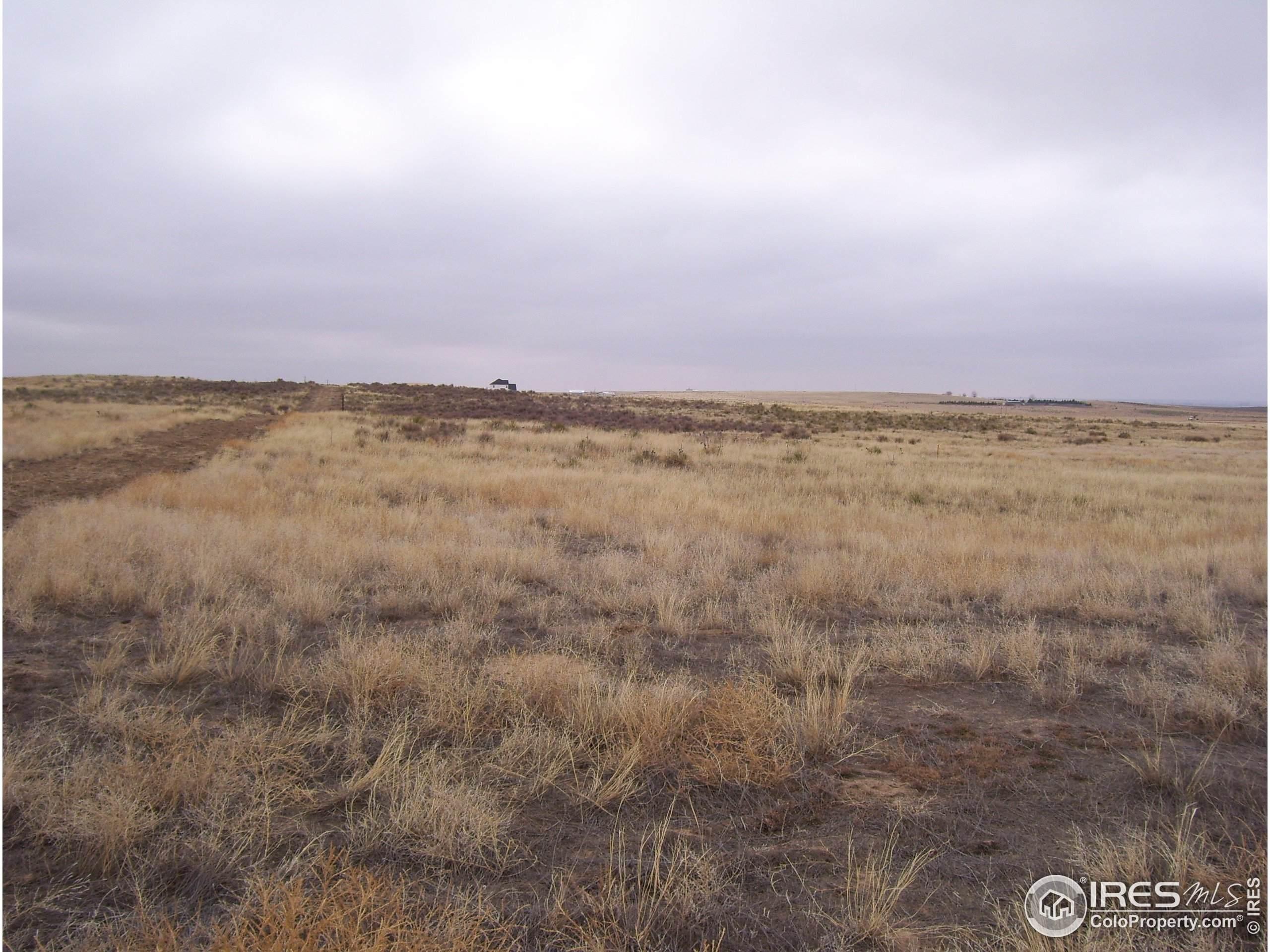 5117 Lake Trail Ct, Firestone, CO 80504 (MLS #913556) :: 8z Real Estate