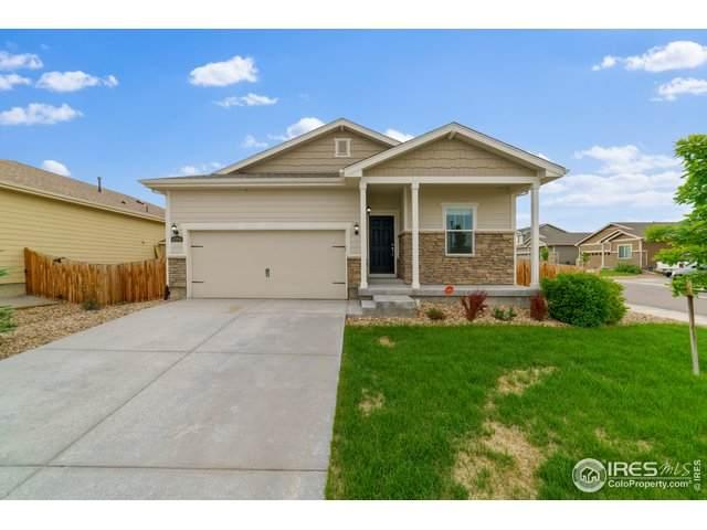 4599 E 95th Ct, Thornton, CO 80229 (MLS #913629) :: 8z Real Estate